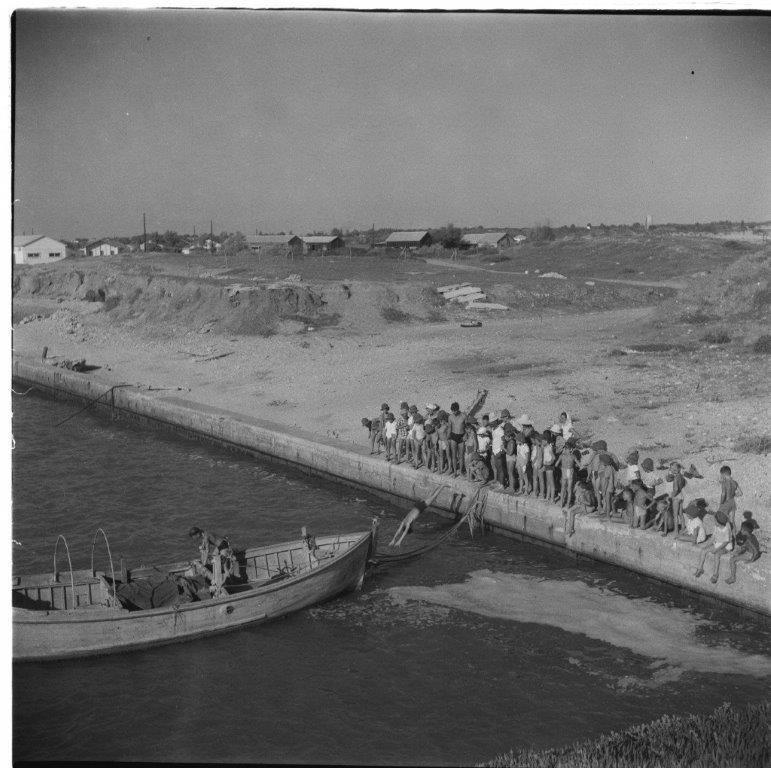 קופצים לים ליד המזרח קייטנת משמר השרון 1954
